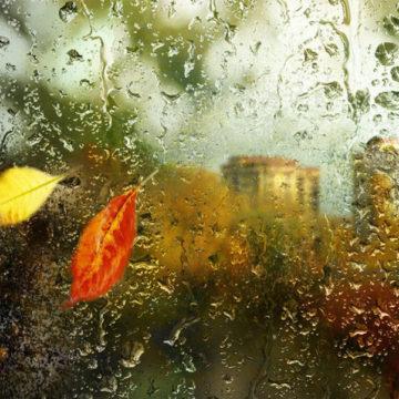 Осень! Дожди! Скидки!