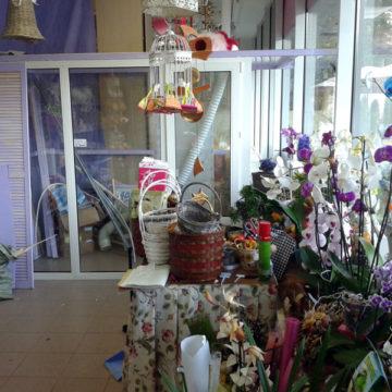 Одинцово, Перегородка в цветочном магазине Профиль Монблан Термо 60 мм, двухкамерный стеклопакет